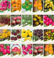 sebze kapları toptan satış-Yeni gökkuşağı domates tohumları, nadir domates tohumları, bonsai organik sebze meyve tohumları, saksı bitki ev bahçe için I185