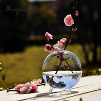 ingrosso vasi di pesce-Terrario da vaso per fiori da tavolo, vaso per fiori Hydroponic Flower, mini acquario, vetro trasparente