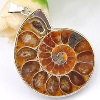 ammonit-anhänger großhandel-Luckyshine 2Pcs / lot Weihnachten 925sterling Silber Einfaches Design stellen alte Weisen Ammoniten-Fossilanhänger für Damegeschenk 31 * 41mm wieder her
