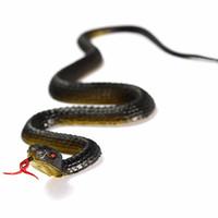 halloween des serpents en caoutchouc achat en gros de-En caoutchouc Haute Simulation Jouet Serpent Modèle Drôle Effrayant Serpent Enfants Gag Jouets Prank Drôle Jouets Halloween Prank Prop Pour Décor 23 cm