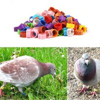 Wholesale pet parrot supplies - 8*7mm Birds Foot Ring Clip Leg Band Rings With Numbers Chickens Pigeon Bayonet Marking Ring Parrot Clip Rings Pet Supplies AAA261