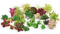 ingrosso piante da giardino decorazione-vendita calda piante grasse artificiali assortite piante succulente finte unpotted per la parete del giardino di casa decorazioni fai da te all'ingrosso