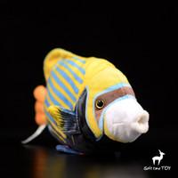 kinder weiche fische spielzeug großhandel-Kinder Spielzeug Plüschtiere Bis dorn royal angelfish Puppe Weiche Tropical Fish Puppen Präsentieren Spielzeuggeschäfte