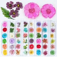 çivi jöle çiçekleri toptan satış-Nail Art Rhinestones Süslemeleri 12 Renk Nail Art Doğa Kuru Çiçekler Set Jel Lehçe İpucu 3D DIY Çiçek Dilimleri Çıkartması Pro Manikür