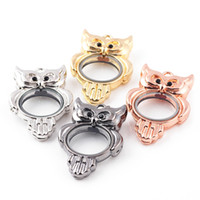 Wholesale animal pendent jewelry for sale - Group buy 5pcs mm mm mm Smooth face Owl glass locket pendent Fit Floating Charms DIY Necklace Jewelry Making