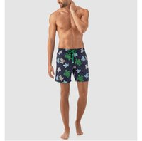 de5687bd4f Quick-drying seaside holiday beach pants male hot springs boxing loose swimming  trunks five points lined trend shorts