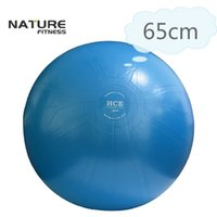 Wholesale fits commercial - 65cm Commercial Gymnastic Fitness Pilates Balance Exercise Gym Fit Yoga Core Ball Indoor Fitness Training Yoga Ball Free Pump