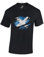 ingrosso bandiere scozia-SCOTLAND FLAG SLASH MENS T-SHIRT SCOTTISH CALCIO RUGBY FAN IDEA REGALO (COLORE)