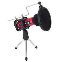 autohalter video großhandel-Mini Professional FM Wireless Car Mikrofon MIC mit einem Halter und einem Lautsprecher ein Kopfhörer für Youtube Podcasting GarageBand Video Recorder