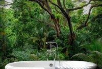 ingrosso decorazione dei boschi domestici-Carta da parati personalizzata Foto carta da parati 3D Woods landscape Mural Wall Home Interior Decoration Wall Paper