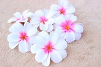 Wholesale frangipani artificial flowers for sale - Group buy Fashion Wedding Birthday Party Pieces cm Hawaiian Plumeria Frangipani Artificial Lint Flower Heads Wedding Decoration
