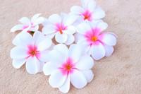 frangipani yapay çiçekler toptan satış-Moda Düğün / Doğum Günü / Parti 100 Adet 7.5 cm Hawaii Plumeria Frangipani Yapay Lint Çiçek Başları Düğün Dekorasyon