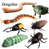 brinquedos insetos para crianças venda por atacado-Dongzhur Crianças Brinquedos Infravermelho RC Controle Remoto de Alta Simulação Animal Aranha Barata Inseto Indução Brinquedos Malícia Engraçado