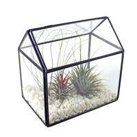 ingrosso piante di piante succulente fiorite-Centrotavola di terracotta fatto a mano in vetro per terriccio decorativo per vaso di fiori