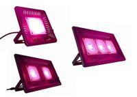 Hot Sale Full Spectrum Grow Lights AC 110V 220V Waterproof COB LED light For Indoor Plants LED grow light