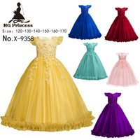 Wholesale plus size tutu wedding dresses for sale - Group buy 1pcs Girls plus size lace Embroidered ball wedding gowns Kids Flying Sleeve pageant dresses girls floor lengths layers christening dresses