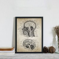 Wholesale vintage office posters resale online - Vintage Human Head And Brain Anatomy Canvas Art Prints Poster Neuroscience Human Anatomy Painting Doctors Office Wall Art Decor