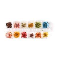tırnak cilası karışık renkler toptan satış-24/36 ADET 12-Colors Gerçek Kurutulmuş Çiçek Dekorasyon Nail Art Karışık Renk Korunmuş 3D DIY Çıkartmalar Lehçe Aracı Manikür Aksesuarları