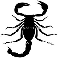 Wholesale car die cuts resale online - HotMeiNi Scorpion Sticker For Car Rear Windshield Truck SUV Bumper Auto Laptop Kayak Art Wall Die Cut Decal Colors