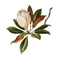 flores de tecido para costura venda por atacado-Guarnição Da Borda Do Laço da flor colorida Guarnição Da Fita Largura Estilo Vintage Edging Guarnições Tecido Bordado Applique Costura Craft Decoração 11