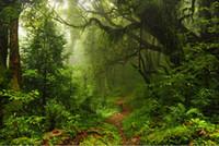 décors de fées achat en gros de-7x5ft fée forêt tropicale boue arbre chemin tunnel personnalisé Photo Studio toile de fond fond vinyle 220 cm x 150 cm