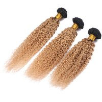 Wholesale two tone afro kinky hair weave for sale - Group buy Two Tone Hair Weaves Honey Blonde Kinky Curly Hair Extensions Bundles Deals Afro Kinkys Curl Virgin Brazilian Human Hair