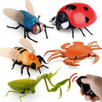 Wholesale blue crab toy for sale - Group buy Infrared RC animal Insect Toys Simulation spider bee fly crab Ladyb mantis Electric robot Toy Halloween Prank Insects kids toys MX200414