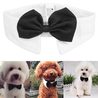 ingrosso bello nero-Cane Cat Pet Tie Puppy Toy Bow Tie Cravatta Vestiti British Black Kitten Tie Handsome Dog per la decorazione Festival