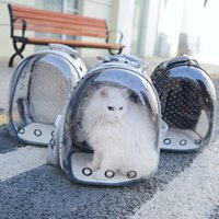 mochilas de aves al por mayor-Bolsa para gatos transpirable Bolsa portátil para gatos para mascotas Bolsa de viaje transparente transpirable Parrot Dog Bird Mochila Jaula de transporte