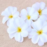frangipani yapay çiçekler toptan satış-100 Adet 7.5 cm Hawaiian Plumeria Frangipani Yapay Lint Çiçek DIY Şapkalar Ev Düğün Dekorasyon Sahte Çiçek