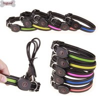Wholesale led dog collar for sale - Group buy Adjustable LED Dog Collar Pet Safety Night Luminous Belts Collars For Dog Pet Cat Usb Cable Charging Dogs Light Collar SP Y200515