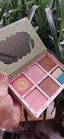 blush highlighter venda por atacado-2019 Newset PINCETES ROSA ESQUADRÃO Blush Highlighters Paleta CHOKKLEADERS BRONZE SQUAD Eyeshadow Frete Grátis