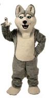 ingrosso costumi di compleanno per adulti-2019mascot costumes la festa di carattere del costume della mascotte del cane di Halloween Testa che immagina il compleanno adulto di dimensione del costume