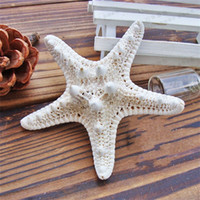 Wholesale ocean decor resale online - Starfish Ocean Sea Star Natural Tropical Wedding Party Home Wall Hanging Decor Hot Sale qm UU