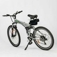 31 pil toptan satış-Gümüş TDL6118 Katlanır Elektrik Bisiklet 36V 10Ah Lityum Batarya 250W Motor MTB