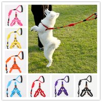 Wholesale durable leashes resale online - 4 Size Pet Training Leash Collar Cats Dogs Leashes With Harness Durable Mutlicolor Pet Traction Rope S M L XL
