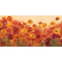 calla lily pintura al óleo fotos al por mayor-Pintura de Shirley Novak Summer Poppies lienzo arte moderno pintado a mano decoración del hogar