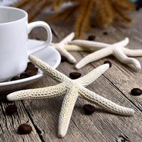 centros de mesa de acrílico para bodas. al por mayor-Hot 30 unidades 10-12 cm Blanco Natural Dedo estrella de mar Artesanía Decoración Natural Sea Star DIY Beach Cottage Decoración de la boda Dropshipping
