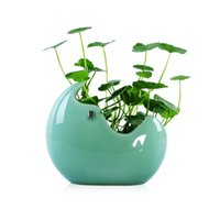 Wholesale fish terrarium for sale - 2018 New Flower Pot Ceramic Ball Vase Terrarium Wall Fish Tank Aquarium Container Homw Decor