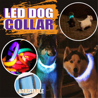 Wholesale led reflective dog collar resale online - Led Dog Collar Usb Rechargeable With Waterproof Reflective Light Up Dog Collar Flashing Light Adding Safety To Night time