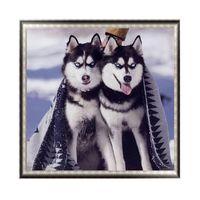 nackte klassische gemälde großhandel-Diy, Diamantstickerei Husky, Hund, 5d Diamantmalerei Tiere voller Diamant Mosaik 3D-Bilder von Strass Kreuzstich Kits