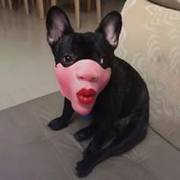 Wholesale funny pet toys resale online - Funny Fun Mask Big Lips Headgear Pet Funny Masks Pet decoration Happy Cute Pets toy toys Pets Supplies Active Atmosphere Home