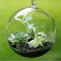 Wholesale l shaped vase resale online - Terrarium Ball Globe Shape Clear Hanging Glass Vase Flower Plants Terrarium Container Micro Landscape DIY Wedding Home