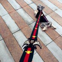 petit chien à la mode achat en gros de-Collier de chien pour animaux de compagnie colliers Collier de sécurité pour animaux de compagnie Little Bee Supplies Laisses Harnais Mode Teddy Schnauzer Collier réglable à sangle gilet