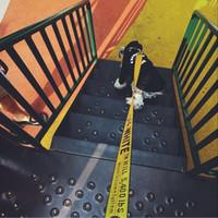 coleiras de cão de strass branco venda por atacado-White Off Coleira de cão trelas Peito Voltar Moda Teddy Schnauzer ajustável Strap Vest Collar coleiras para cães Harnesses Dog Supplies DA11