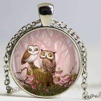 cam baykuş toptan satış-Güzel Baykuş Kolye Kolye, Kadınlar İçin Gümüş El Sanatları Takı Cam Kubbe Fotoğraf Uzun Zincir kolye Takı