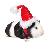 hacer traje de cerdo al por mayor-Traje de Navidad hecho a mano Mascota Cerdo Holandés conjunto de gorro ropa para mascotas X337