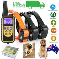 colliers d'entraînement électriques pour chiens achat en gros de-Collier de dressage de chien à distance électrique 3 récepteur anti-aboiement anti-écorce de 800 m de collier de dressage en mode automatique avec télécommande