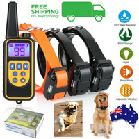 cães anti casca colarinho venda por atacado-Elétrica Remoto Dog Training Collar 3 Receptor Anti Bark 800 m Range Auto Modo colar de treinamento do cão com controle remoto