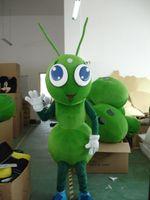 mascote real venda por atacado-Alta qualidade mascot costume 100% real imagem ant traje da mascote para adulto frete grátis